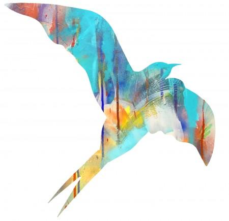 bird 1-vivid